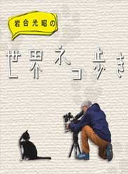 岩合光昭的猫步走世界 海报