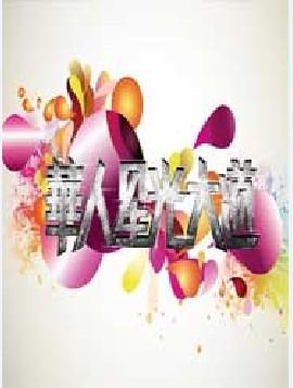 華人星光大道3(2014)